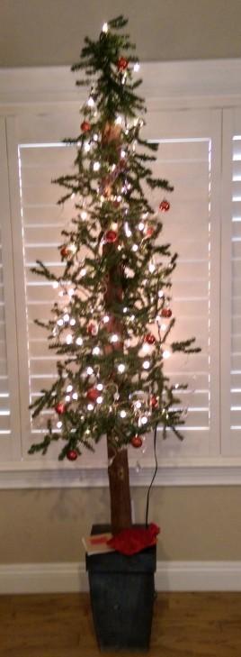 Tall thin christmas tree